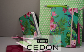 CEDON_mini